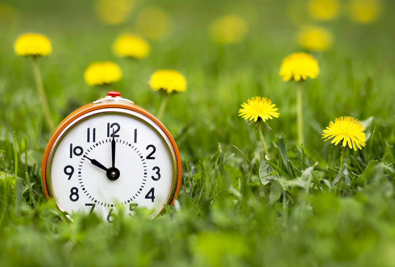 Change Your Clocks, Spring forward